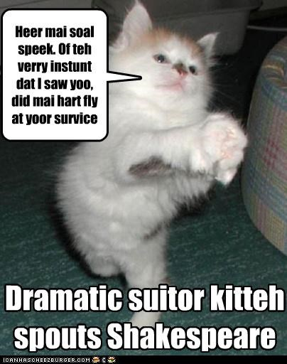Heer mai soal speek. Of teh verry instunt dat I saw yoo, did mai hart fly at yoor survice Dramatic suitor kitteh spouts Shakespeare