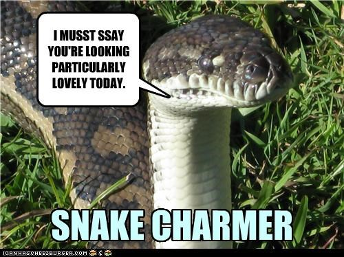 caption,captioned,charm,charmer,literalism,pun,snake,snake charmer