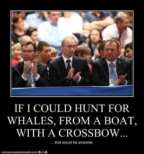demotivational funny lolz Vladimir Putin vladurday - 3945883648