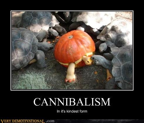 cannibals,nom nom nom,perverse,pumpkins,Terrifying,turtles