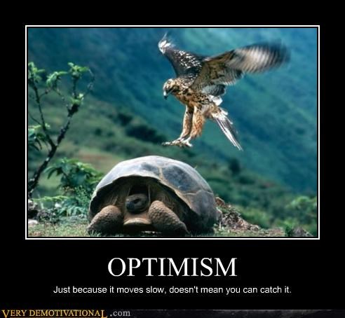 animals,eagle,food chain,idiots,optimism,slow,turtle