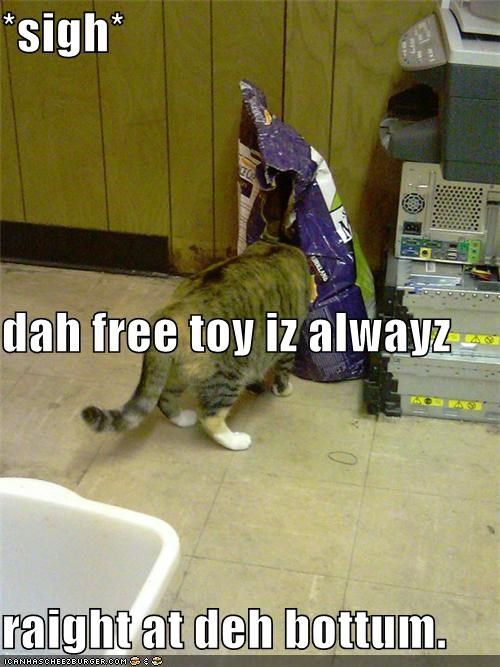 at the bottom caption captioned cat cat food digging free sigh toy