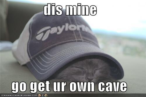 caption captioned cave cute hiding kitten mine - 3951377152