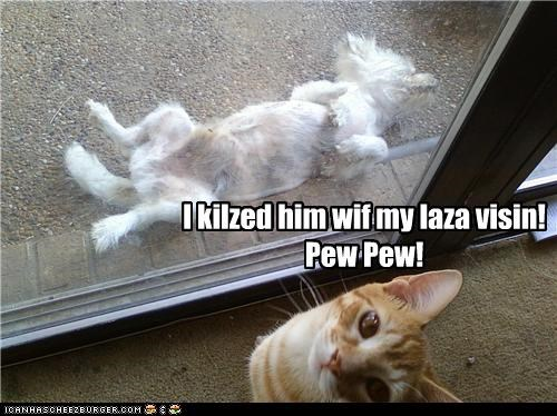 caption captioned cat hunting killed the dog laser pew pew trophy vision - 3951799296