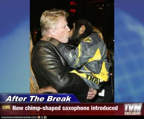 animals chimpanzees gary busey saxophone wtf - 3951888128