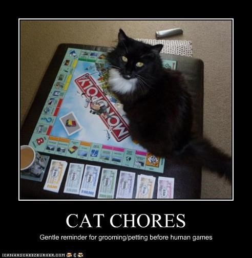 CAT CHORES Gentle reminder for grooming/petting before human games