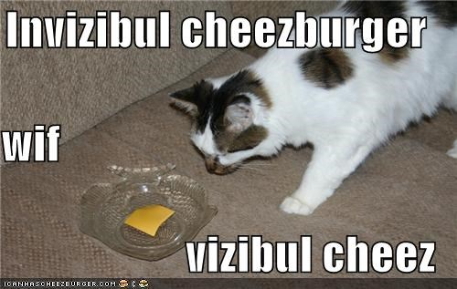 Cheezburger Image 3954512128