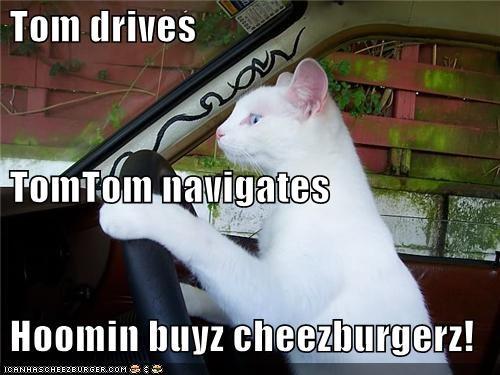 Cheezburger Image 3958550272