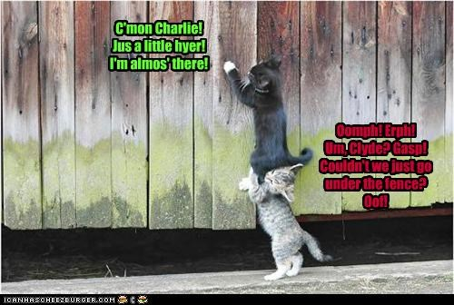 C'mon Charlie! Jus a little hyer! I'm almos' there! Oomph! Erph! Um, Clyde? Gasp! Couldn't we just go under the fence? Oof!