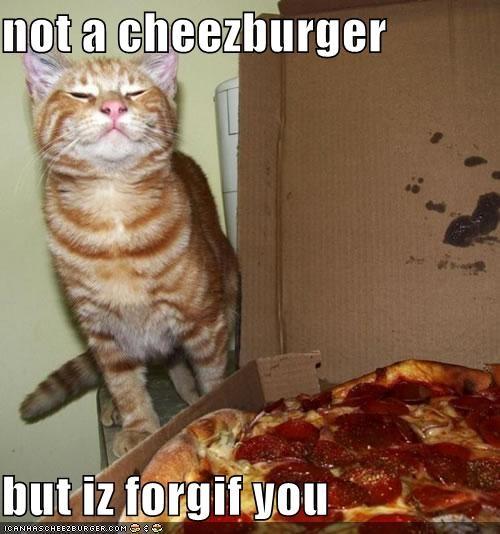 Cheezburger Image 3958647552