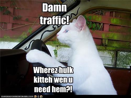 Wherez hulk kitteh wen u need hem?! Damn traffic!