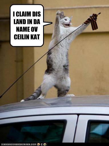 caption captioned car cat ceiling cat claiming conquering flag land - 3958889728