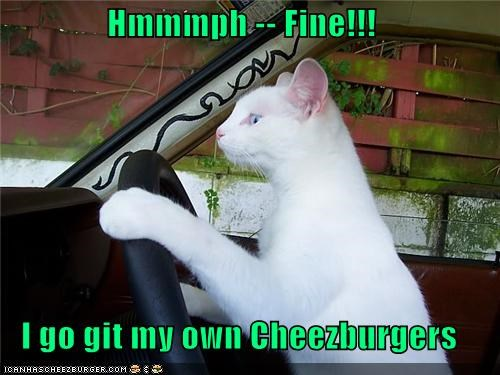 Cheezburger Image 3958918400