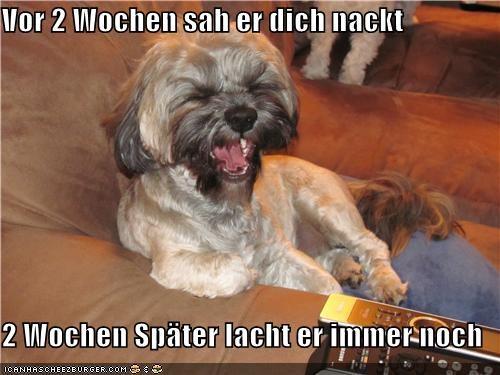 Cheezburger Image 3959911168