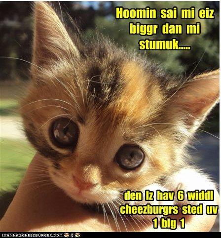Cheezburger Image 3960613376