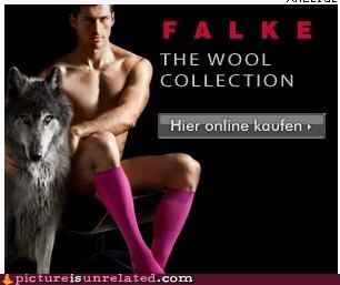 advertisement color socks wolf wtf - 3961491968