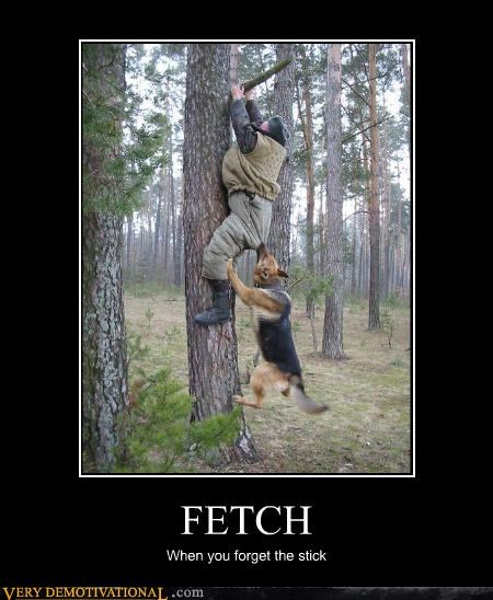 FETCH When you forget the stick