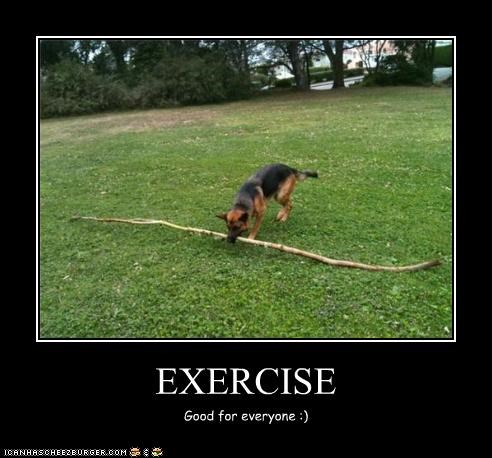 EXERCISE Good for everyone :)
