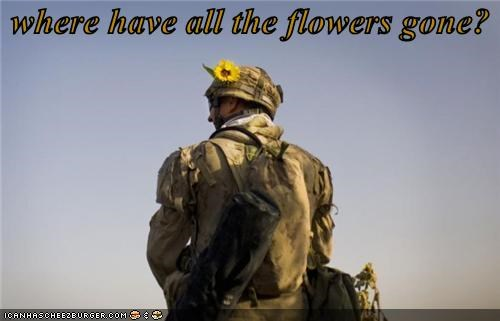 Flower lolz Music soldier war - 3963521792
