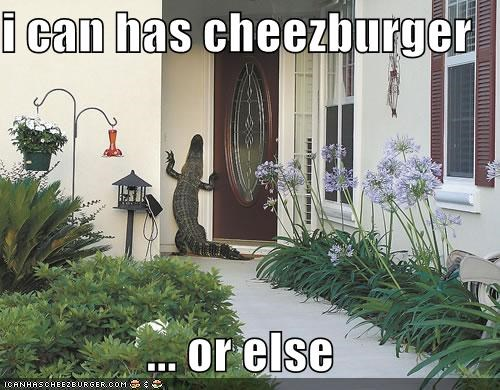 Cheezburger Image 3964610048