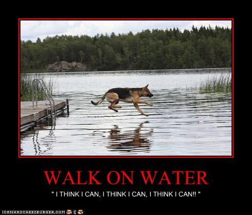 """WALK ON WATER """" I THINK I CAN, I THINK I CAN, I THINK I CAN!! """""""