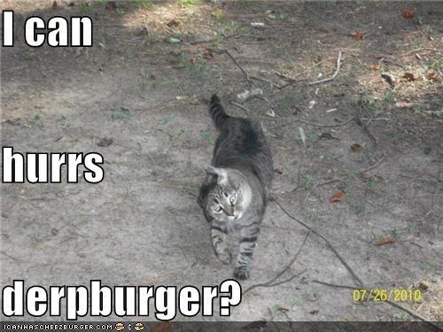Cheezburger Image 3966041088