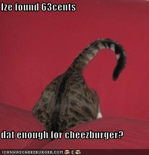 Cheezburger Image 3967038720