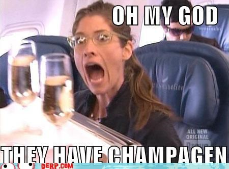 airplane Celebriderp champagne omg project runway reality tv - 3969249792