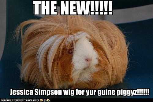THE NEW!!!!! Jessica Simpson wig for yur guine piggyz!!!!!!