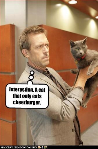 celebrity-pictures-house-cheezburger lolz - 3971000064