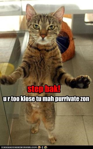 caption captioned cat entrance denied forbidden private step back zone