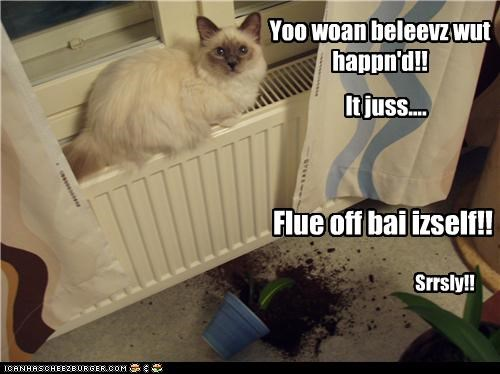 It juss.... Flue off bai izself!! Yoo woan beleevz wut happn'd!! Srrsly!!