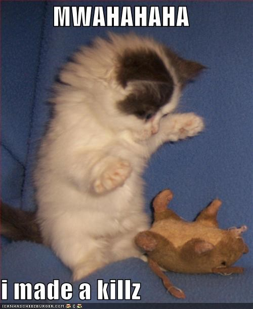 caption captioned hunting i made one kill kitten maniacal laughter Predator stuffed animal - 3972032512