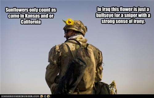 Sunflowers only count as camo in Kansas and or California In Iraq this flower is just a bullseye for a sniper with a strong sense of irony.