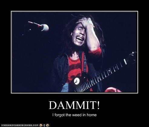 bob marley,celebrity-pictures-bob-marley-dammit,gaming,Music,pot,rasta,rock band,ROFlash,smoking,Ziggy Marley