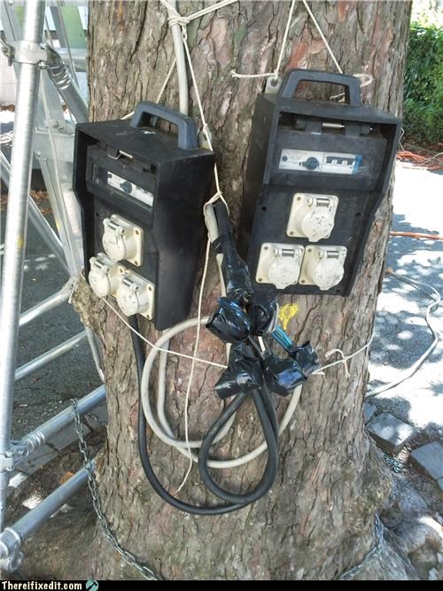 Kludge,outdoors,outlet,tree