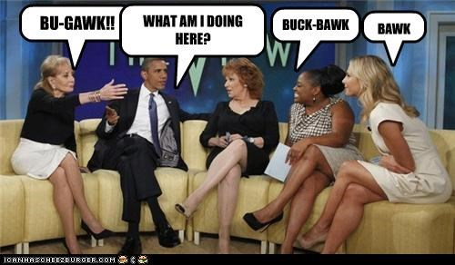 barack obama,Democrat,funny,lolz,president,the view,TV