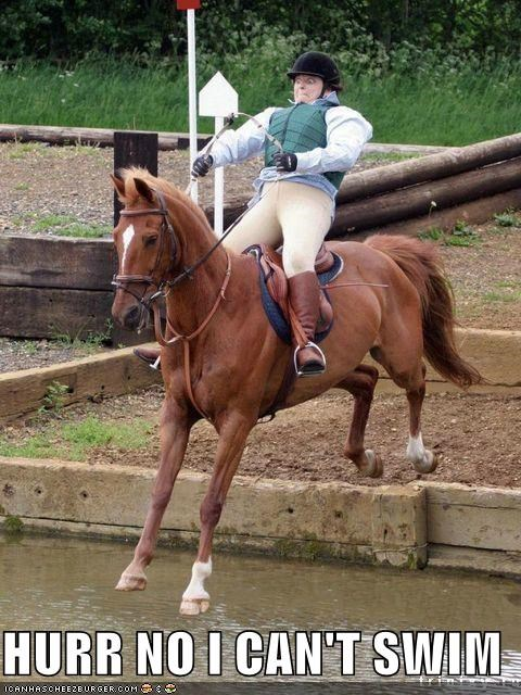 critters derping around horse riderp Sportderps two for one water