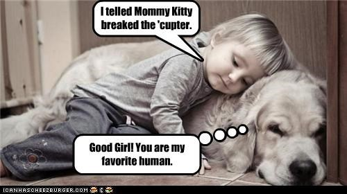 I telled Mommy Kitty breaked the 'cupter. Good Girl! You are my favorite human.
