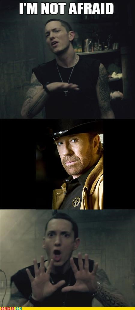 chuck norris,eminem,fear,Music,popular music,rap,walker