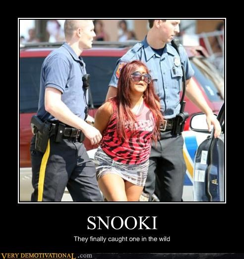 caught snooki wild