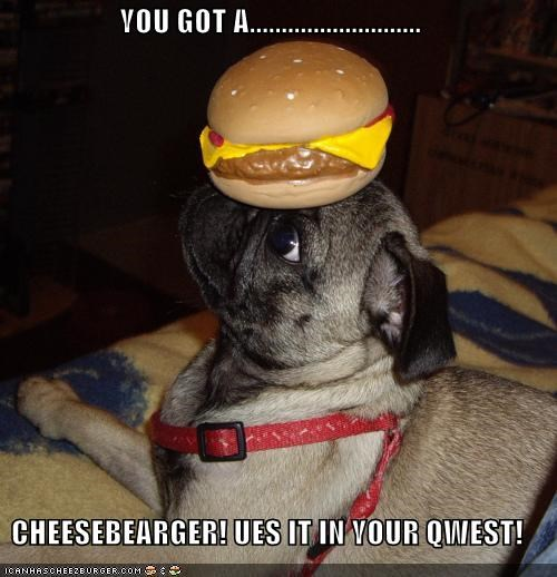 Cheezburger Image 3978190336