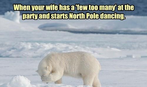 polar bears captions