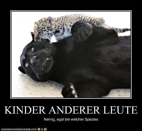 Cheezburger Image 3978468608