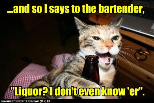 bad joke caption captioned cat cliché drinking groan Hall of Fame joke liquor terrible - 3980649216