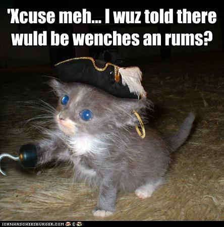 caption captioned confused Earring hat hook kitten misunderstanding Pirate promised Rum wenches