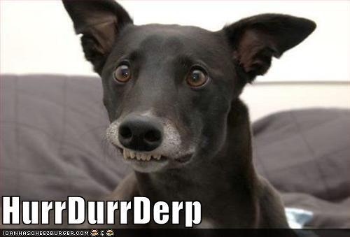 goggie herp derp dogs teefs - 3983983616