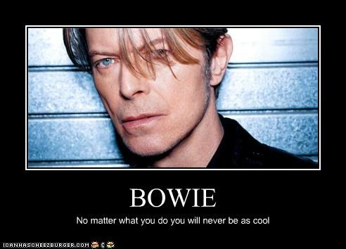 cool david bowie lolz musician