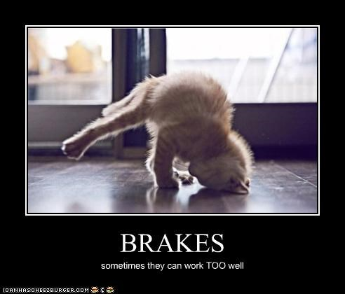 accident brakes caption captioned crash headstand kitten stopping woops work too well