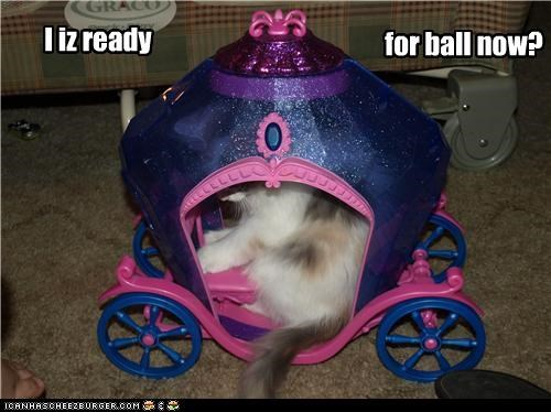 ball caption captioned carriage cat cinderella hiding question ready - 3985571072